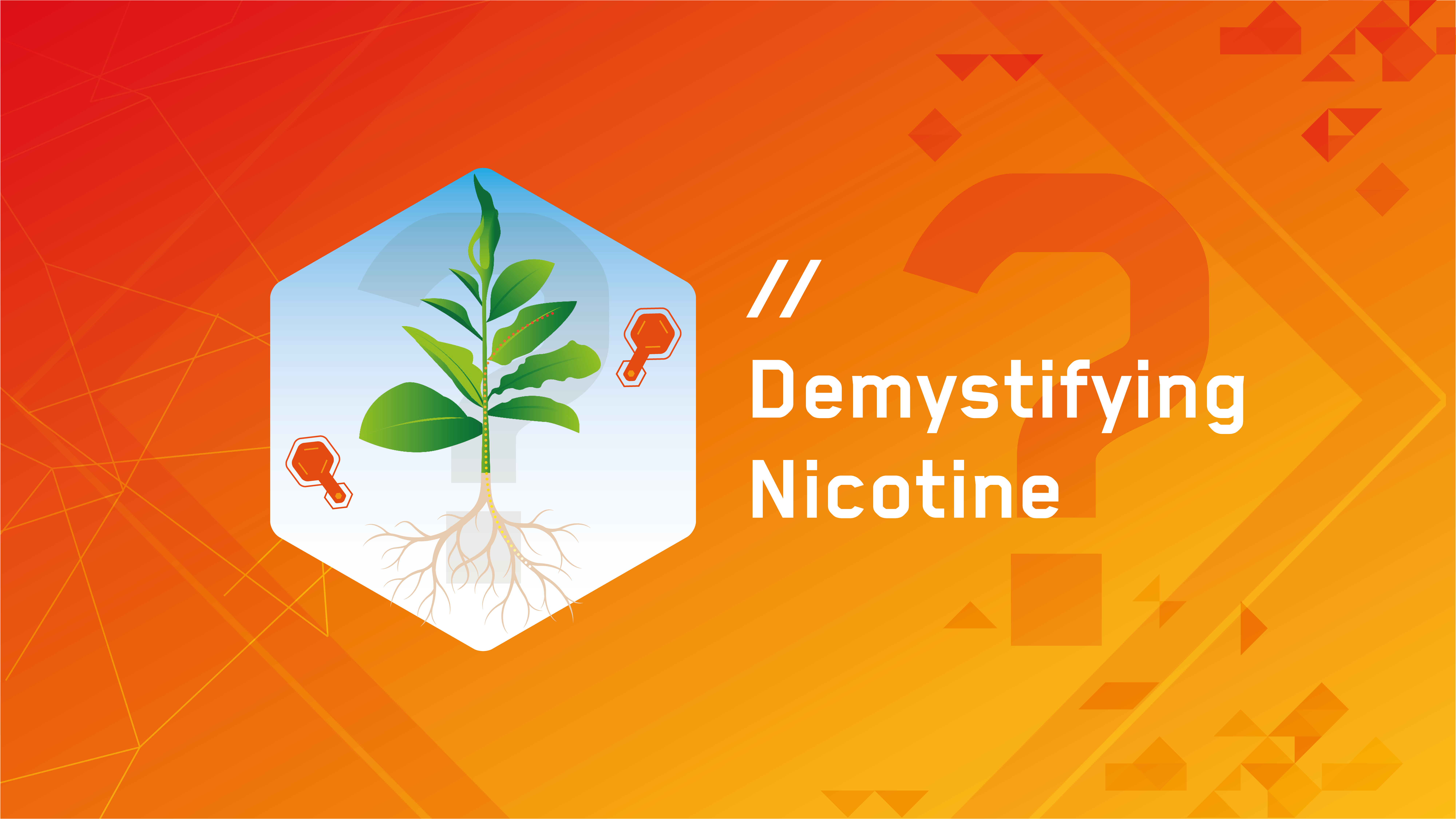 Video: Demystifying nicotine